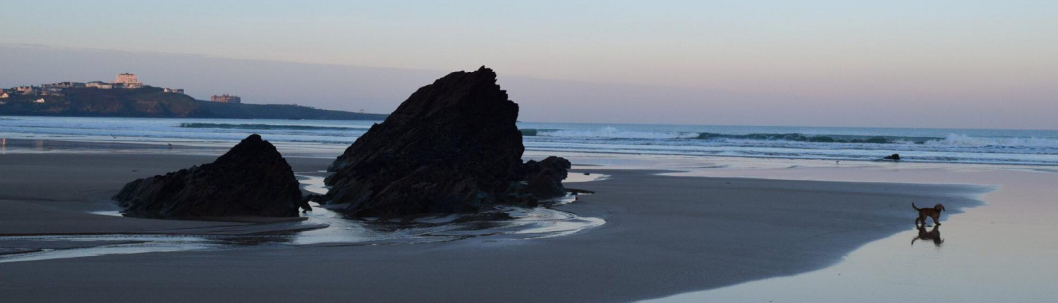 Risk Management Services in Cornwall