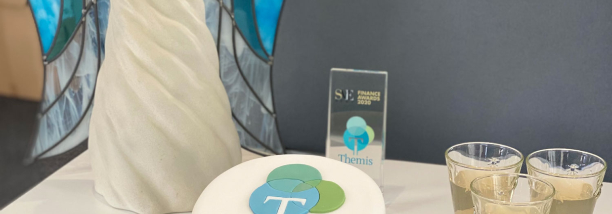 Themis First Birthday